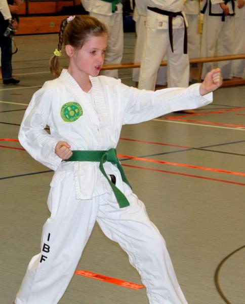 Taekwondo Deutschen Meisterschaft im Semikontakt-Karate und Kata