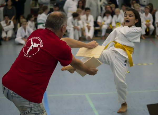 taekwondo nachwuchsturnier