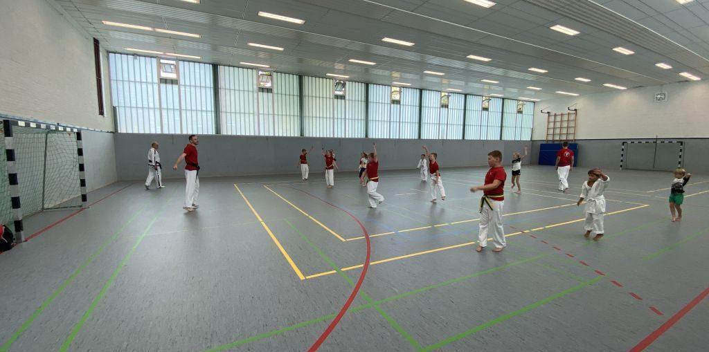 tus-laer-08 taekwondo taekwon-do training halle led kampf schutzausrüstung